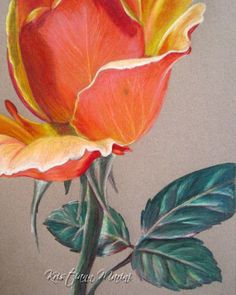 Colored Pencil Art Print Stop and Smell the by LoveJoyPeaceDesigns