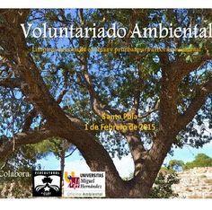 #Alicante VOLUNTARIADO AMBIENTAL ecoagricultor.com