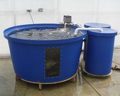 Aquaculture system