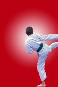 Kids Jiu-Jitsu lessons offered at Goshin Jiu-Jitsu of Lakewood Ranch. Ages 8 and up. Karate Games, Karate Party, Wii Games, Lakewood Ranch Fl, Soldier Party, Kids Jiu Jitsu, Future School, Ninja Party, Party Themes