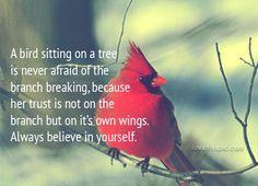 A bird quotes quote life inspirational wisdom lesson