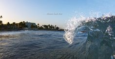 Hawaii Luxury Beachfront Hotels   The Mauna Lani Bay Hotel & Bungalows   Big Island Golf & Spas