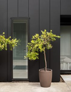 Striking yet simple, we see how this Waikanae home uses black cladding to set the scene for its minimalist interior style Black Pergola, Deck With Pergola, Patio Roof, Diy Pergola, Pergola Plans, Pergola Ideas, Pergola Kits, Curved Pergola, Patio Ideas