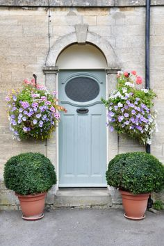 Only got four walls and a front door? No problems! Pots and hanging baskets filled with wildlife-friendly plants are a great way to give nature a home if you don't have a garden #homesfornature
