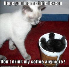 This is what I am going to do from now on. If you drink my coffee, you will suffer. HAHAHA (evil laugh.)