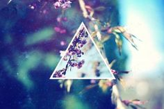 hipster triangle!