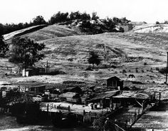 Animals graze in fields outside Chavez Ravine homes in this undated photo. Courtesy of the Photo Collection, Los Angeles Public Library. California History, California Dreamin', Iconic Photos, Old Photos, Dodger Stadium, Sports Stadium, San Luis Obispo County, San Fernando Valley, Los Angeles Area