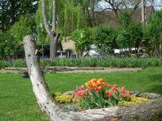 ô mon jardin!...ô mon arbre!