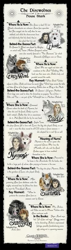 'Game of Thrones': Everything You Need to Know About the Direwolves of House…