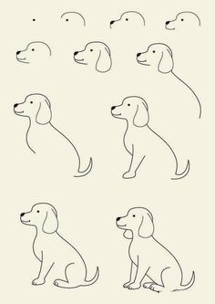 How-to-draw-Cute-Animals-46.jpg (600×848)