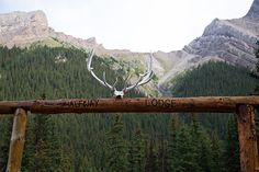The entrance to Halfway Hut