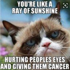 You're like a ray of sunshine.
