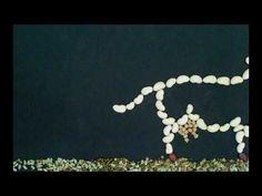 Visionnez en ligne le court-métrage «Les légumineuses nous parlent»   Lundi sans Viande
