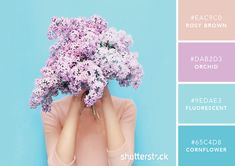 101 Color Combinations to Inspire Your Next Design – Colorful Bloom Color Palette