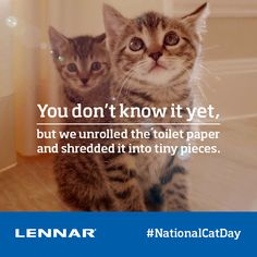 Happy National Cat Day! Stop and give your fur ball some #love right #meow!