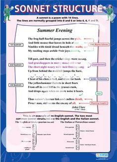 What does sonnet form mean?