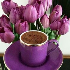 Image may contain: plant and flower Good Morning Coffee, Coffee Break, Chocolate Caliente, Hot Chocolate, I Love Coffee, My Coffee, Pause Café, Coffee Pictures, Coffee Photography