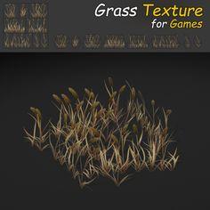 Grass_10