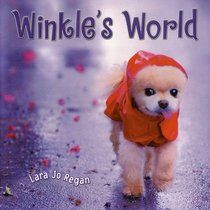 Love this series of books!  Mr. Winkle- my childhood book that I love!
