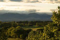 Sunset in Masterton New Zealand [51863456] by Jack Murphy [OC]