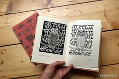 A Wisdom of Owls - a book with wonderful illustrations