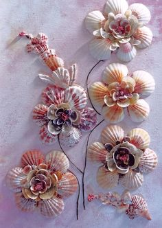 Shell Flowers  No 1  Photograph by Karin  Dawn Kelshall- Best