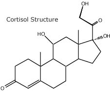 Cortisol is a stress hormone that helps us in genuinely dangerous situations by redirecting resources to the most urgent needs, such as repairing a wound or fighting an infection. - www.dana.org