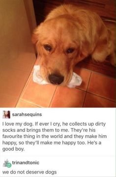 Wow! You have a sensitive dog, and he picks up after people!