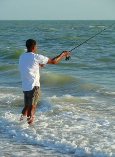 Bait to use for Surf Fishing #Saltwaterfishing