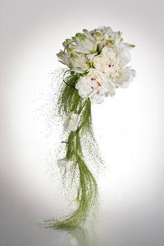 Designed by Floral ArmaniFiori