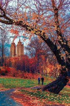 Upstate New York – Enjoy the Great Outdoors! - Upstate New York – Enjoy the Great Outdoors! Nyc Fall, Autumn In New York, Fall City, Photographie New York, Autumn Scenes, Autumn Cozy, Autumn Park, Autumn Aesthetic, Autumn Photography