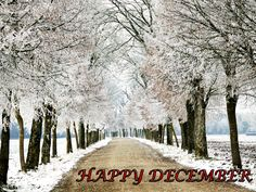 Hello December! Please make my all wishes come true :)