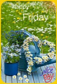 Good Morning Picture, Good Morning Flowers, Good Morning Images, Good Morning Greetings, Good Morning Wishes, Blue Garden, Summer Garden, Birthday Congratulations, Daisies