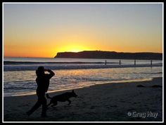 Dog Beach - San Diego, CA. Nothing is better than a day at the beach with your best friend <3