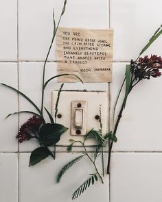 poetry at unexpected places pt. 37 by noor unnahar // words quotes writing indie pale grunge floral pressed flowers hipsters aesthetics aesthetic, instagram creative photography ideas inspiration //