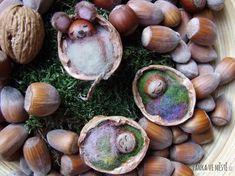 Postýlky z vlašských ořechů.