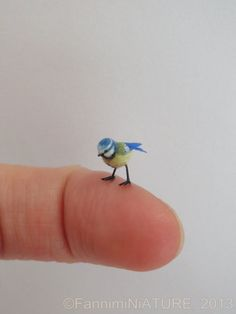 Dollhouse miniature Blue Tit - 1:12 scale - OOAK - handsculpted