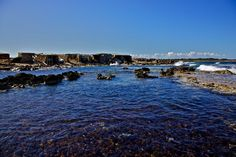Ses Basetas - Formentera - Mediterranea Pitiusa