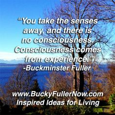 Learn more about using Buckies Generalized principles and the Undefeatable Laws of Nature at http://www.StrategyWithSpirit.com