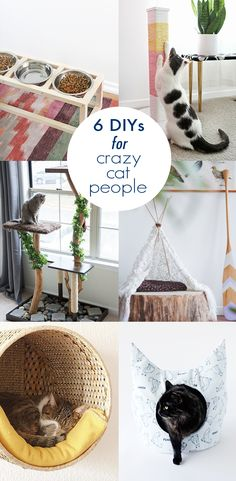 Make all the other cats jealous with these DIYs for crazy cat people (and their…
