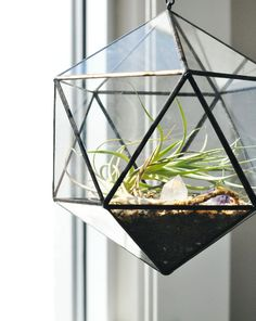 geometric terrariums that will contrast with the round edges of the G plan chair. This will bring the nature in the house in a particular way.