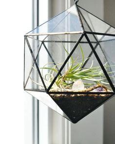 terrarium & crystal