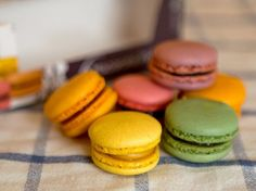 French macaroons.  Love them, especially the pistachio!