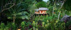 matangi-island-treehouse-fiji