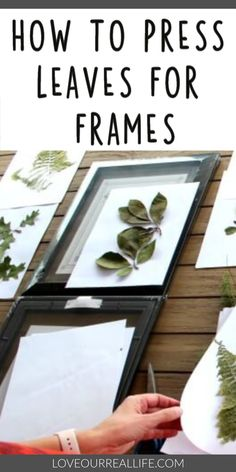 Learn how to frame pressed leaves. If you are looking for a fun stay at home activity, go to your backyard and create some beautiful artwork with pressed leaves. This simple DIY will be add so much meaning to your home decor. Diy Crafts For Home Decor, Easy Home Decor, Home Decor Wall Art, Decor Room, Framed Leaves, Pressed Leaves, How To Preserve Leaves, Leaf Projects