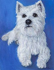 A Young Westie - Acrylic on canvas 8 x 10. Prints available @ http://fineartamerica.com/featured/young-westie-robin-wiesneth.html