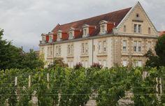 Domaine de la Solitude Chateauneuf Du Pape, Corsica, Food Heaven, Hostel, Mcdonalds, Bordeaux, Wines, Island, Mansions