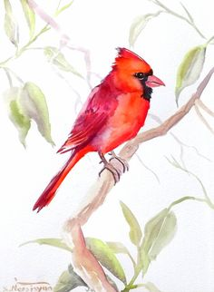 """""""ORIGINALONLY"""" Red Cardinal, original watercolor painting, northern cardinal, male cardinal, bird lover, bird painting"""