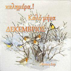 Δεκέμβριος: Εικόνες για Καλημέρα-Καλό Μήνα.! - eikones top Christmas Blessings, Beatrix Potter, Blessed