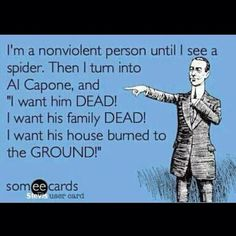 Death to all creepy crawlers in the house! Haha, so true...